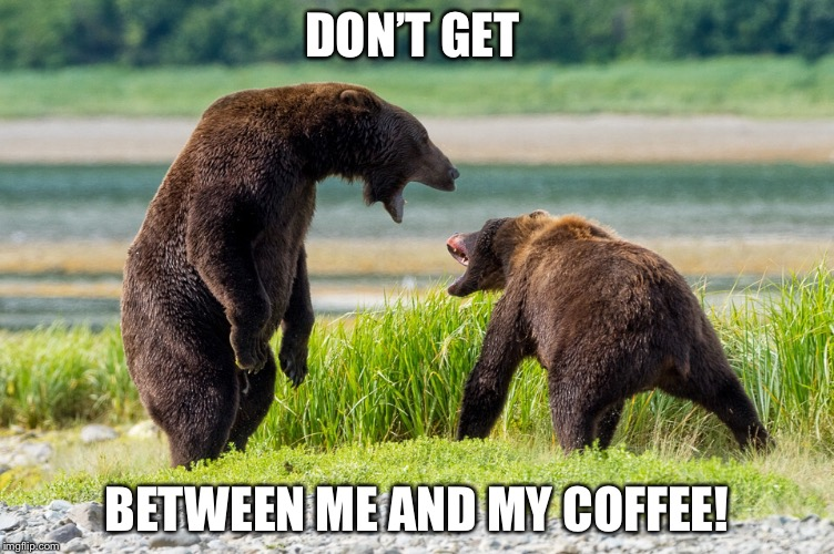 Don't do it! | DON'T GET BETWEEN ME AND MY COFFEE! | image tagged in coffee addict | made w/ Imgflip meme maker