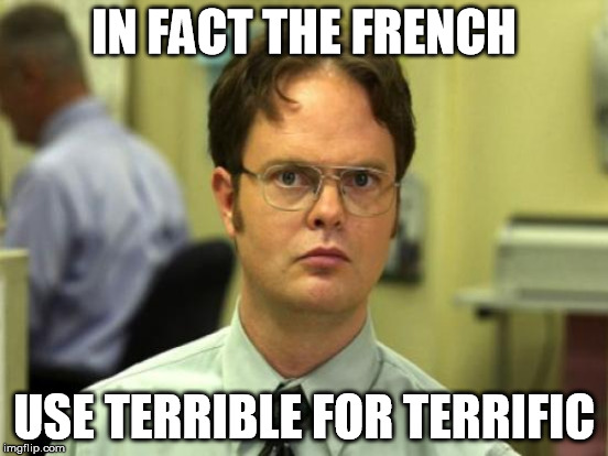 IN FACT THE FRENCH USE TERRIBLE FOR TERRIFIC | made w/ Imgflip meme maker