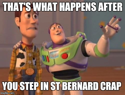 X, X Everywhere Meme | THAT'S WHAT HAPPENS AFTER YOU STEP IN ST BERNARD CRAP | image tagged in memes,x,x everywhere,x x everywhere | made w/ Imgflip meme maker