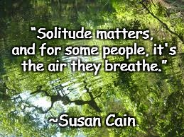 "Forest Reflection | ""Solitude matters, and for some people, it's the air they breathe."" ~Susan Cain 