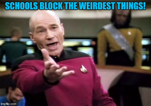 Picard Wtf Meme | SCHOOLS BLOCK THE WEIRDEST THINGS! | image tagged in memes,picard wtf | made w/ Imgflip meme maker