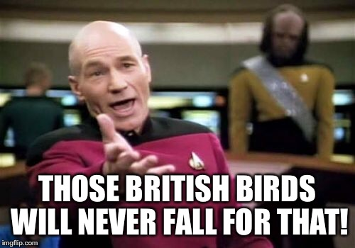 Picard Wtf Meme | THOSE BRITISH BIRDS WILL NEVER FALL FOR THAT! | image tagged in memes,picard wtf | made w/ Imgflip meme maker