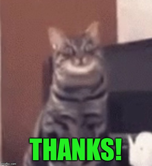 Catnip | THANKS! | image tagged in catnip | made w/ Imgflip meme maker