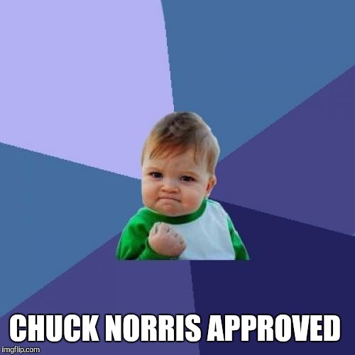 Success Kid Meme | CHUCK NORRIS APPROVED | image tagged in memes,success kid | made w/ Imgflip meme maker