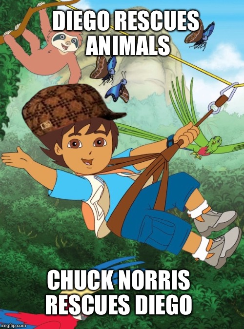 Diego | DIEGO RESCUES ANIMALS CHUCK NORRIS RESCUES DIEGO | image tagged in diego,scumbag | made w/ Imgflip meme maker