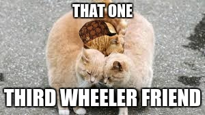 third wheeler friend | THAT ONE THIRD WHEELER FRIEND | image tagged in bff,stalker,cats | made w/ Imgflip meme maker