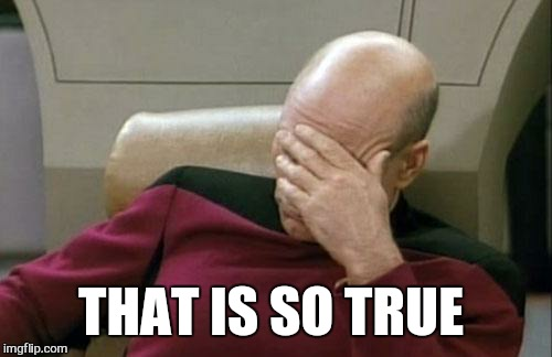 Captain Picard Facepalm Meme | THAT IS SO TRUE | image tagged in memes,captain picard facepalm | made w/ Imgflip meme maker