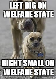 big dog little dog | LEFT BIG ON WELFARE STATE RIGHT SMALL ON WELFARE STATE | image tagged in big dog little dog | made w/ Imgflip meme maker