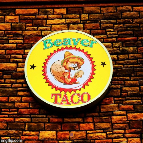 Beaver Taco | . | image tagged in loyalsockatxhamster,beaver,taco,fun stuff,funny signs | made w/ Imgflip meme maker