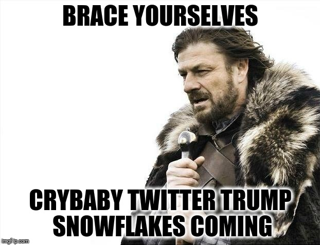Brace Yourselves X is Coming | BRACE YOURSELVES CRYBABY TWITTER TRUMP SNOWFLAKES COMING | image tagged in memes,brace yourselves x is coming | made w/ Imgflip meme maker