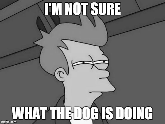 I'M NOT SURE WHAT THE DOG IS DOING | made w/ Imgflip meme maker