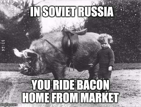 Black & White Meme Week, a Pipe_Picasso event | IN SOVIET RUSSIA YOU RIDE BACON HOME FROM MARKET | image tagged in bacon,in soviet russia,jbmemegeek,black and white week,black and white,bacon meme | made w/ Imgflip meme maker