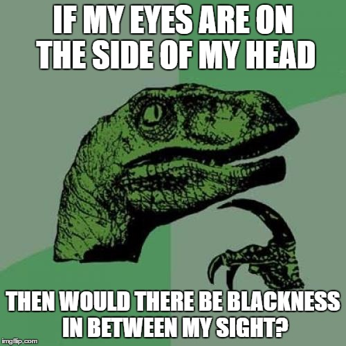 Philosoraptor Meme | IF MY EYES ARE ON THE SIDE OF MY HEAD THEN WOULD THERE BE BLACKNESS IN BETWEEN MY SIGHT? | image tagged in memes,philosoraptor | made w/ Imgflip meme maker