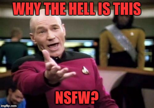 Picard Wtf Meme | WHY THE HELL IS THIS NSFW? | image tagged in memes,picard wtf | made w/ Imgflip meme maker