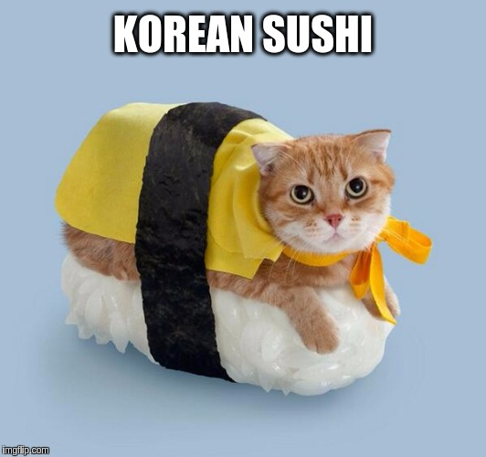 This dish have a real meow to it!!! ≧◠‿◠≦✌ | KOREAN SUSHI | image tagged in memes,funny,cute,cats,food,sushi | made w/ Imgflip meme maker
