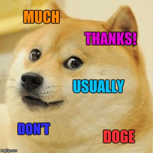 Doge Meme | MUCH THANKS! USUALLY DON'T DOGE | image tagged in memes,doge | made w/ Imgflip meme maker