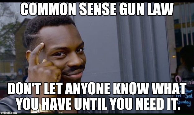 common sense | COMMON SENSE GUN LAW DON'T LET ANYONE KNOW WHAT YOU HAVE UNTIL YOU NEED IT. | image tagged in common sense | made w/ Imgflip meme maker