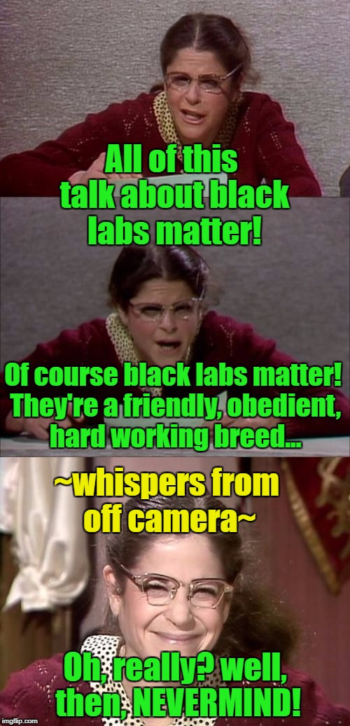 Might be a repost, but I guess that this is the week to do that! | All of this talk about black labs matter! Oh, really? well, then, NEVERMIND! Of course black labs matter! They're a friendly, obedient, hard | image tagged in bad pun gilda radner playing emily litella,black lives matter,black labs,dogs,repost | made w/ Imgflip meme maker