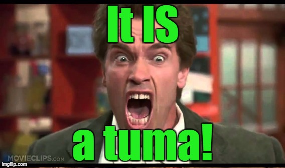 It IS a tuma! | made w/ Imgflip meme maker