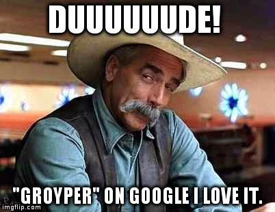 "DUUUUUUDE! ""GROYPER"" ON GOOGLE I LOVE IT. 