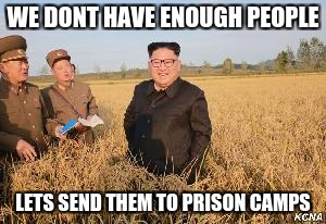 WE DONT HAVE ENOUGH PEOPLE LETS SEND THEM TO PRISON CAMPS | image tagged in kim jong un,north korea | made w/ Imgflip meme maker