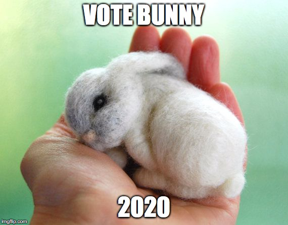 VOTE BUNNY 2020 | image tagged in vote bunny 2020 | made w/ Imgflip meme maker