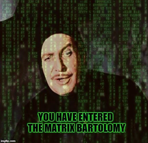 YOU HAVE ENTERED THE MATRIX BARTOLOMY | image tagged in vincent price,classic movies,the pit and the pendulum,edgar allan poe,the matrix,halloween | made w/ Imgflip meme maker