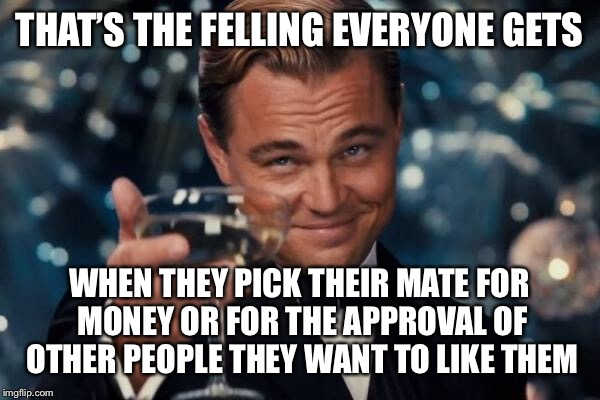 Leonardo Dicaprio Cheers Meme | THAT'S THE FELLING EVERYONE GETS WHEN THEY PICK THEIR MATE FOR MONEY OR FOR THE APPROVAL OF OTHER PEOPLE THEY WANT TO LIKE THEM | image tagged in memes,leonardo dicaprio cheers | made w/ Imgflip meme maker