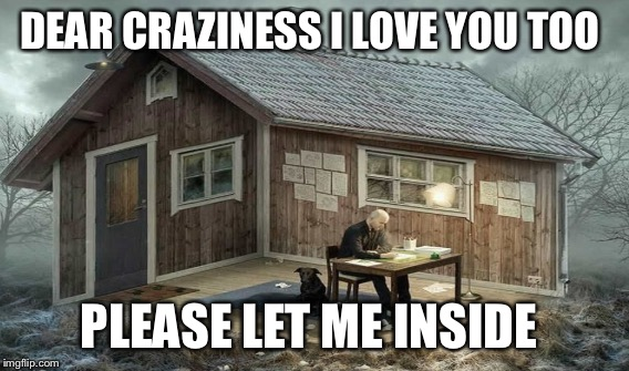 DEAR CRAZINESS I LOVE YOU TOO PLEASE LET ME INSIDE | made w/ Imgflip meme maker