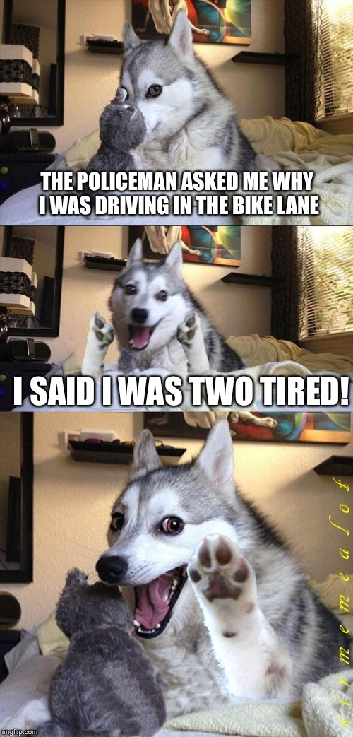 Bad Pun Dog | THE POLICEMAN ASKED ME WHY I WAS DRIVING IN THE BIKE LANE I SAID I WAS TWO TIRED! | image tagged in bad pun dog aliens zinger,memes,bad pun dog,ancient aliens,cycling | made w/ Imgflip meme maker
