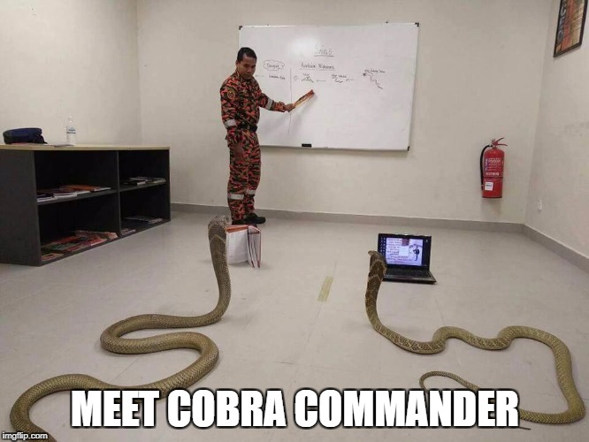 Meet Cobra Commander | MEET COBRA COMMANDER | image tagged in cobra commander,gi joe,snakes,cobra,military,soldiers | made w/ Imgflip meme maker
