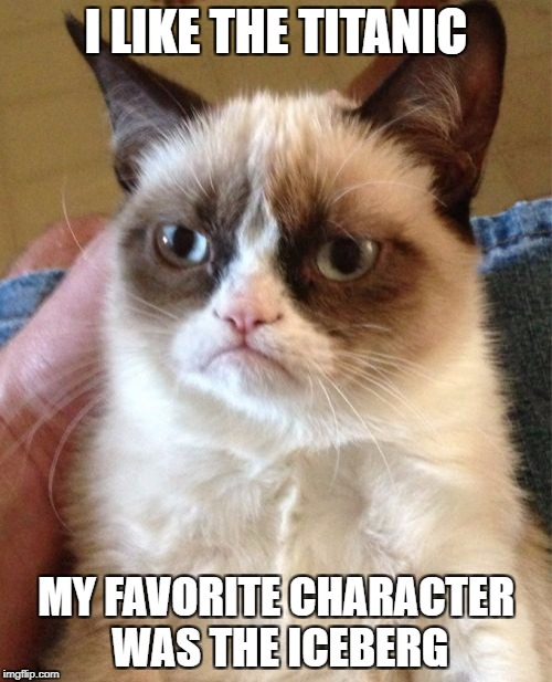 Grumpy Cat Meme | I LIKE THE TITANIC MY FAVORITE CHARACTER WAS THE ICEBERG | image tagged in memes,grumpy cat | made w/ Imgflip meme maker