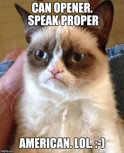 Grumpy Cat Meme | CAN OPENER. SPEAK PROPER AMERICAN. LOL. :-) | image tagged in memes,grumpy cat | made w/ Imgflip meme maker
