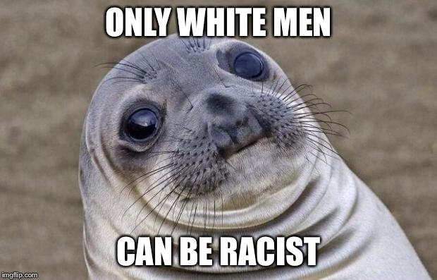 Awkward Moment Sealion Meme | ONLY WHITE MEN CAN BE RACIST | image tagged in memes,awkward moment sealion | made w/ Imgflip meme maker