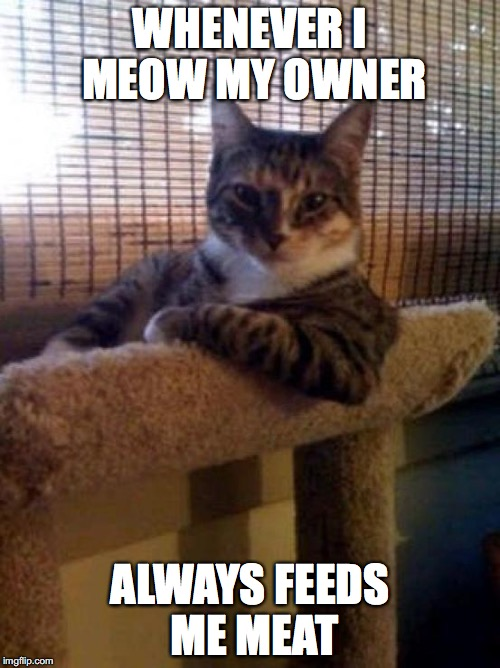 The Most Interesting Cat In The World Meme | WHENEVER I MEOW MY OWNER ALWAYS FEEDS ME MEAT | image tagged in memes,the most interesting cat in the world | made w/ Imgflip meme maker