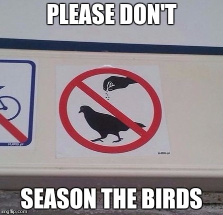 Don't eat wildlife! | PLEASE DON'T SEASON THE BIRDS | image tagged in season the bird,pigeon,bird,birds,food,eat | made w/ Imgflip meme maker