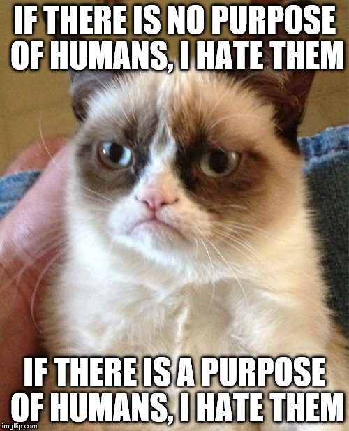 Grumpy Cat Meme | IF THERE IS NO PURPOSE OF HUMANS, I HATE THEM IF THERE IS A PURPOSE OF HUMANS, I HATE THEM | image tagged in memes,grumpy cat | made w/ Imgflip meme maker