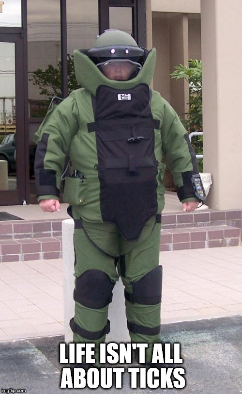 Bomb suit | LIFE ISN'T ALL ABOUT TICKS | image tagged in bomb suit | made w/ Imgflip meme maker