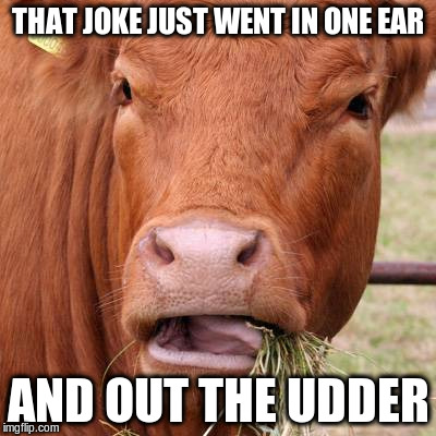 THAT JOKE JUST WENT IN ONE EAR AND OUT THE UDDER | made w/ Imgflip meme maker
