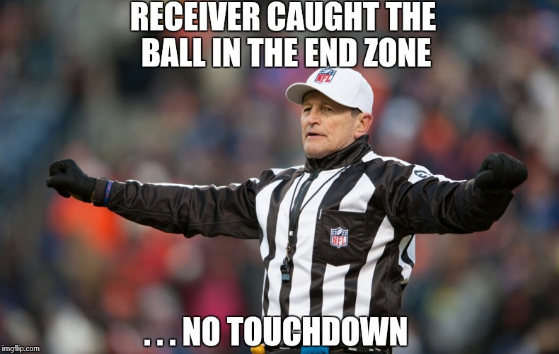 The NFL is going the WWE route , bad calls just for controversy | RECEIVER CAUGHT THE BALL IN THE END ZONE . . . NO TOUCHDOWN | image tagged in fallacy referee ed hochuli,call center,sidious error,public,news | made w/ Imgflip meme maker