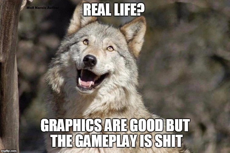 Optimistic Moon Moon Wolf Vanadium Wolf | REAL LIFE? GRAPHICS ARE GOOD BUT THE GAMEPLAY IS SHIT | image tagged in optimistic moon moon wolf vanadium wolf | made w/ Imgflip meme maker