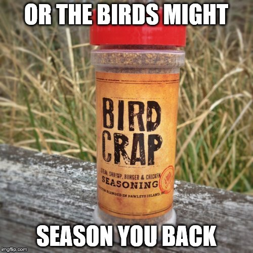 OR THE BIRDS MIGHT SEASON YOU BACK | made w/ Imgflip meme maker
