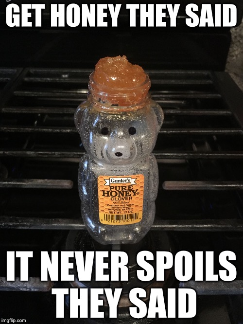 GET HONEY THEY SAID IT NEVER SPOILS THEY SAID | image tagged in honey bear,memes,funny,honey | made w/ Imgflip meme maker