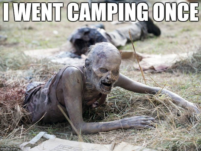The Walking Dead Crawling Zombie | I WENT CAMPING ONCE | image tagged in the walking dead crawling zombie | made w/ Imgflip meme maker