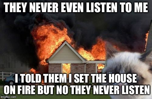 Burn Kitty Meme | THEY NEVER EVEN LISTEN TO ME I TOLD THEM I SET THE HOUSE ON FIRE BUT NO THEY NEVER LISTEN | image tagged in memes,burn kitty,grumpy cat | made w/ Imgflip meme maker