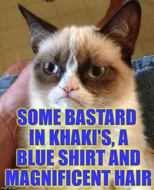 Grumpy Cat Meme | SOME BASTARD IN KHAKI'S, A BLUE SHIRT AND MAGNIFICENT HAIR | image tagged in memes,grumpy cat | made w/ Imgflip meme maker