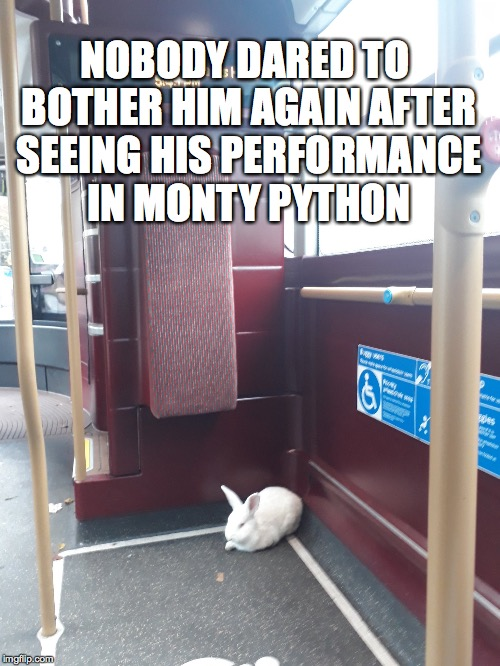 what I'm wondering is how the blood was cleaned off the rabbit | NOBODY DARED TO BOTHER HIM AGAIN AFTER SEEING HIS PERFORMANCE IN MONTY PYTHON | image tagged in monty python,rabbit,killer,one does not simply,well that escalated quickly | made w/ Imgflip meme maker