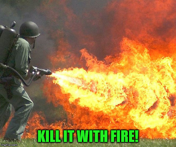 Flamethrower | KILL IT WITH FIRE! | image tagged in flamethrower | made w/ Imgflip meme maker
