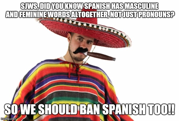 SJWS, DID YOU KNOW SPANISH HAS MASCULINE AND FEMININE WORDS ALTOGETHER, NOT JUST PRONOUNS? SO WE SHOULD BAN SPANISH TOO!! | image tagged in mexican sterotype | made w/ Imgflip meme maker