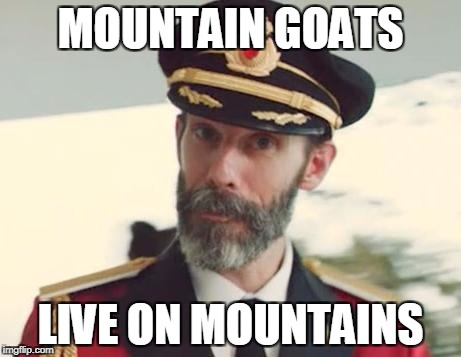Captain Obvious | MOUNTAIN GOATS LIVE ON MOUNTAINS | image tagged in captain obvious | made w/ Imgflip meme maker